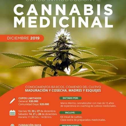 Curso Introductorio al Cannabis Medicinal Diciembre 2019