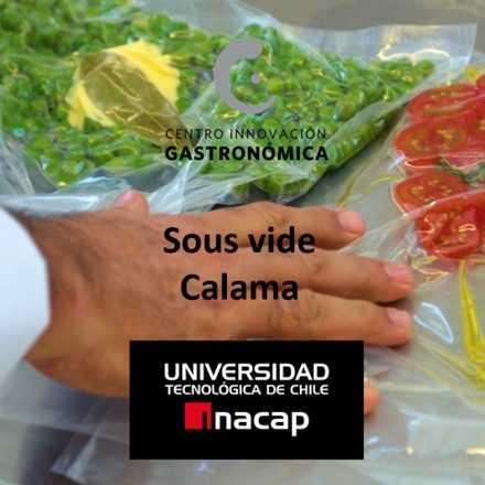 Vacío: módulo presencial  en Calama                                                       Técnicas de cocina Sous Vide ¡Precio promocional!
