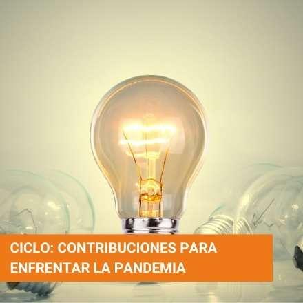 Ciclo: Contribuciones para enfrentar la pandemia