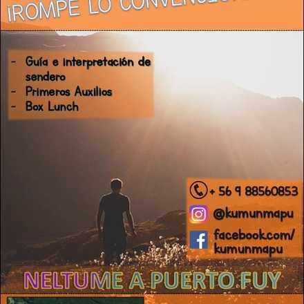 Trekking Puerto Fuy-Neltume