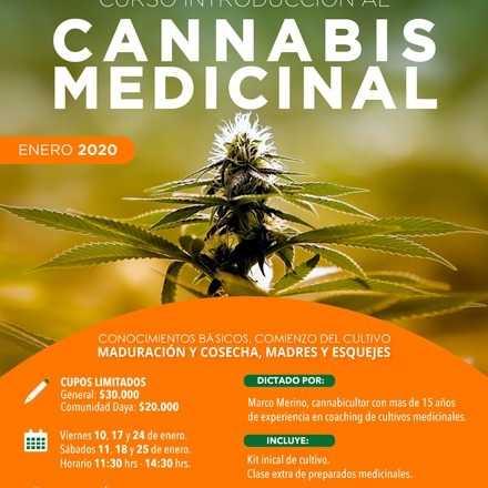 Curso Introductorio al Cannabis Medicinal Enero 2020