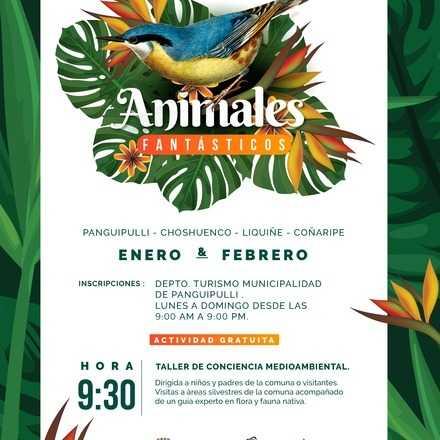Animales Fantásticos 2019, Fecha 8, Coz Coz II, Panguipulli