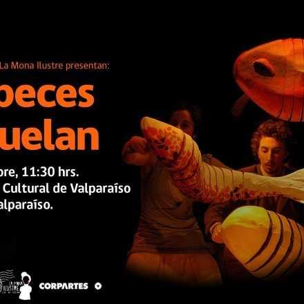 [Teatro] Los peces no vuelan - La Mona Ilustre (11:30 hrs)