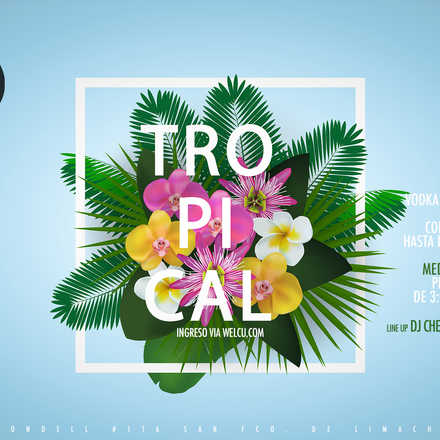 Santo Averno / Tropical
