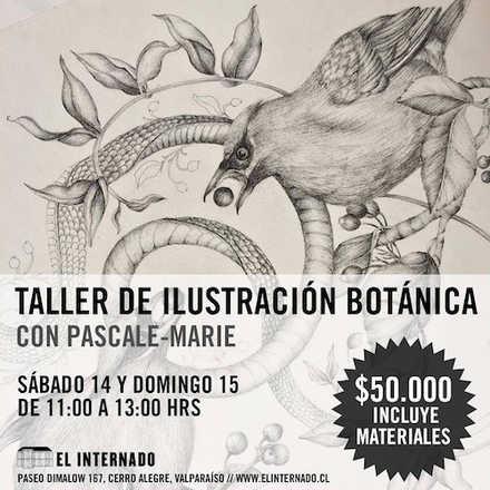 Taller de Ilustración Botánica con Pascale-Marie