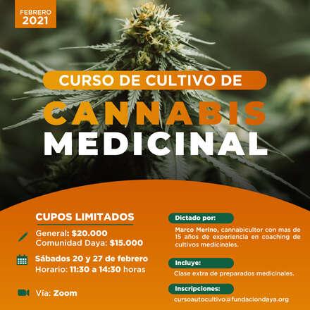 Curso de Cultivo de Cannabis Medicinal febrero 2021
