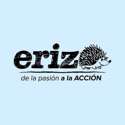 Corrida por el Emprendimiento, Gira del Erizo - Angol 2015