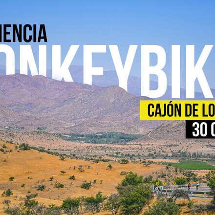 Experiencia Monkey Bikes