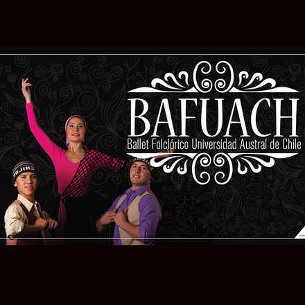 Bafuach en Panguipulli
