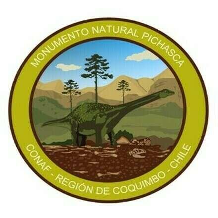 Monumento Natural Pichasca 04 de Marzo 2021