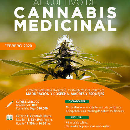 Curso Introductorio al Cultivo de Cannabis Medicinal Febrero 2020