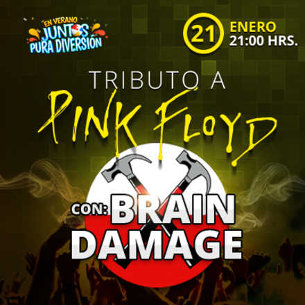 BRAIN DAMAGE TRIBUTO A PINK FLOYD
