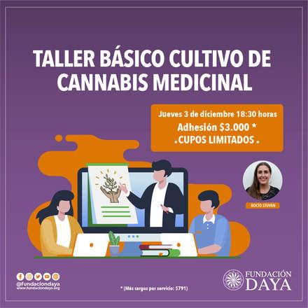 Taller Básico de Cultivo de Cannabis Medicinal 3 diciembre