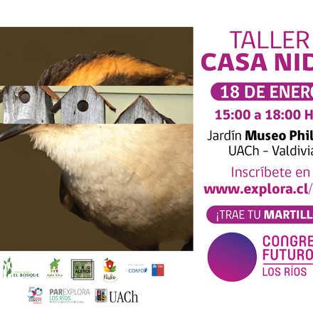 Taller Casa Nido - Congreso del Futuro Los Ríos