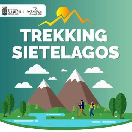 Trekking Parque Nacional Villarrica Sur 2019