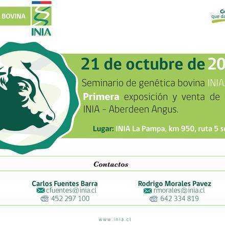 Primera exposición y venta de Toros INIA- Aberdeen Angus