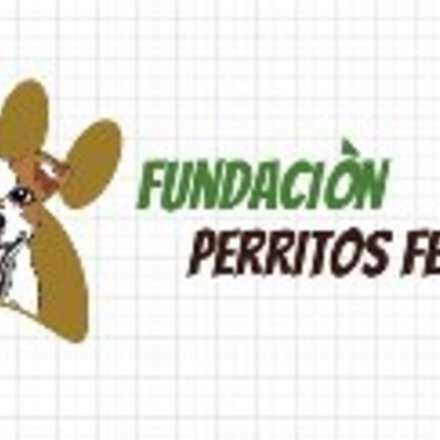 Lanzamiento web fundacion Perritos Felices Col