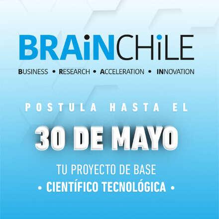 Taller de Postulación de BRAIN Chile