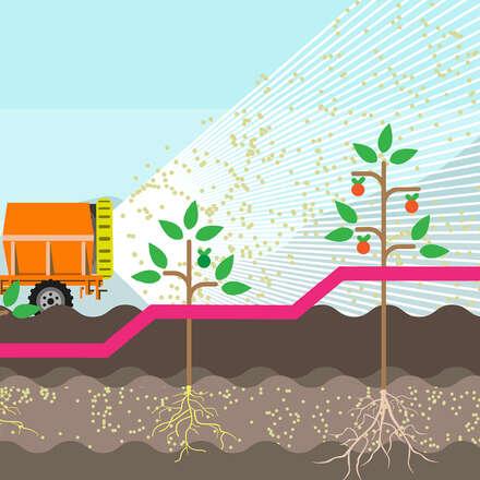 Curso Internacional de Hormonas Vegetales y Reguladores de Crecimiento: Eficiencia en el uso para una mayor producción agrícola.