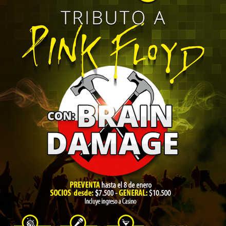 Brain Damage Tributo a Pink Floyd